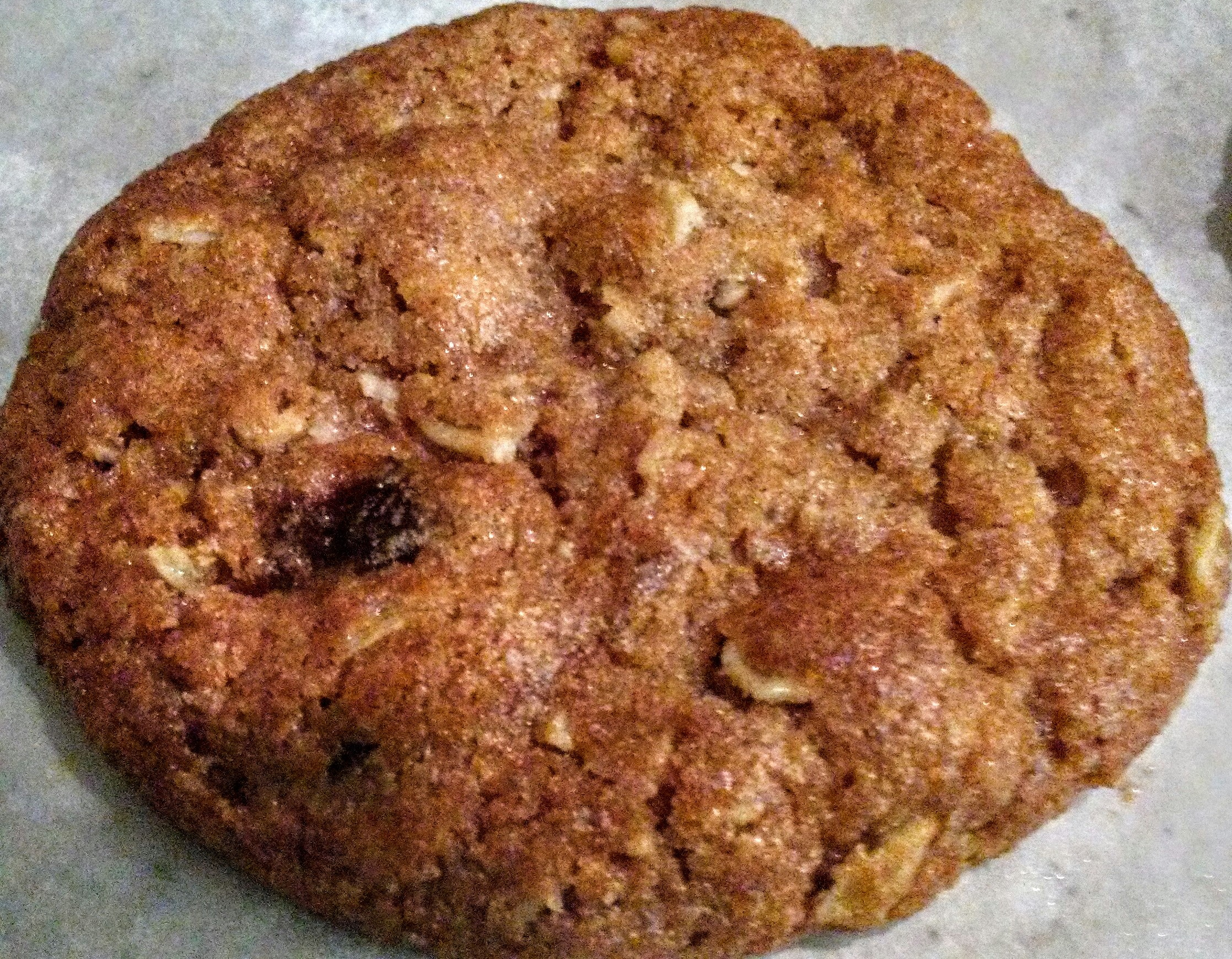 Try Our Fresh Baked Oatmeal Raisin Cookies